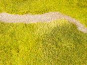 Sommer-Wiese-Rezept Grasmaster
