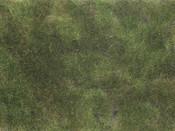 Bodendecker-Foliage olivgrün