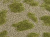 """Natur+ """"Grassteppe"""""""